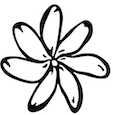 Tiare Flower clipart